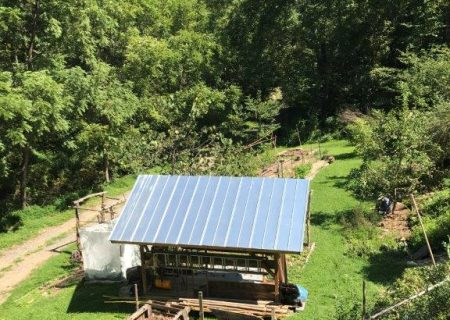 Medicinal Herb Farm for Sale in Marshall, NC