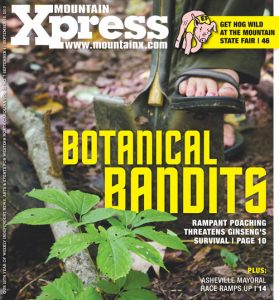 Botanical Bandits – NC Ginseng & Goldenseal Company