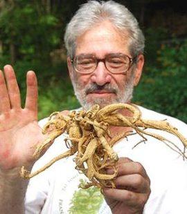 robert eidus holds ginseng root