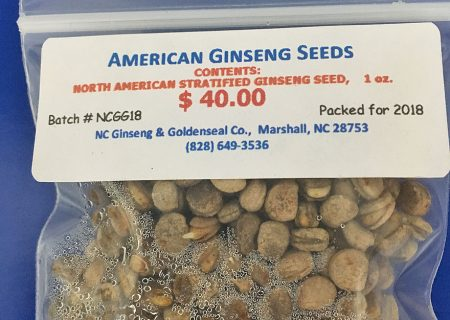 Ginseng Seeds Available Now!